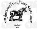 American Shire Horse Association Logo